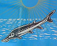 Persian sturgeon fish on a caviar can, Isla Afortunada at The Cheshire Cat Blog