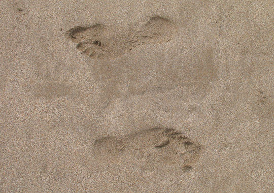Footprints in the sand on Isla Afortunada at The Cheshire Cat Blog