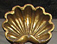 Golden seashell, Isla Afortunada at The Cheshire Cat Blog