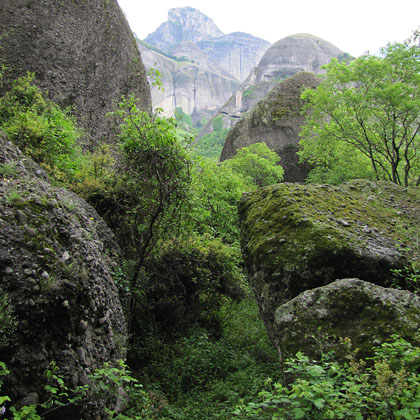 Trees growing among the rocks of Meteora, Greece at The Cheshire Cat Blog
