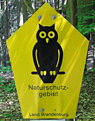 Nature reserve owl, Grumsin, Brandenburg, east Germany at The Cheshire Cat Blog