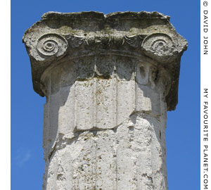 An Ionic column capital of the House of Dionysos in Pella