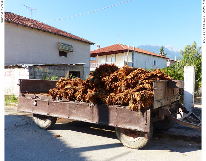 A wagon loaded with tobacco in Dion, Macedonia at The Cheshire Cat Blog
