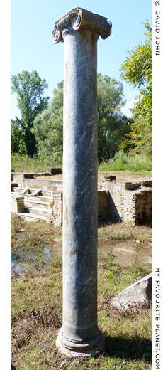 An Ionic column in the sanctuary of Isis, Dion, Macedonia, Greece at The Cheshire Cat Blog