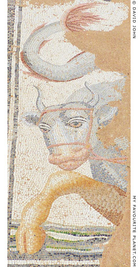 Mosaic of a fabulous creature, half bull, half aquatic animal in Dion Archaeological Park at The Cheshire Cat Blog