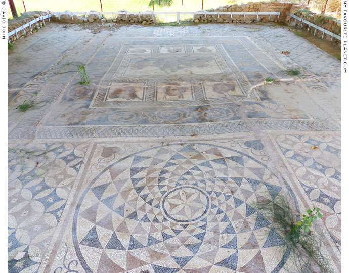 The floor mosiac of the banqueting hall of the Villa of Dionysos, Dion Archaeological Park, Macedonia at The Cheshire Cat Blog