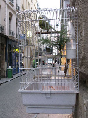 Bird cage in Paris at My Favourite Planet