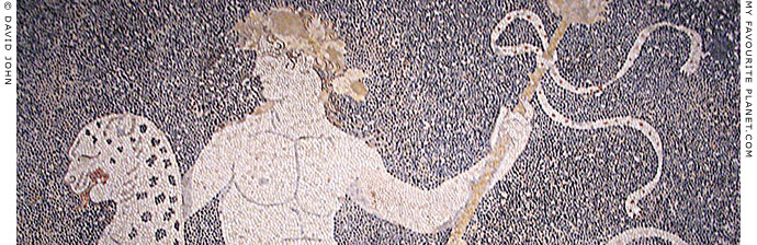 Mosaic of Dionysos riding a panther, Pella Archaeological Museum, Macedonia, Greece at My Favourite Planet