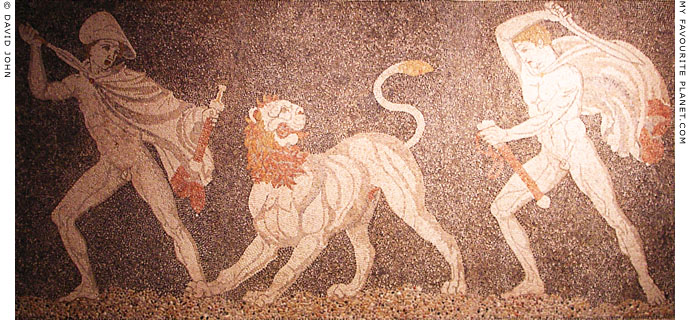 Lion Hunt mosaic, Pella Archaeological Museum, Macedonia, Greece at My Favourite Planet