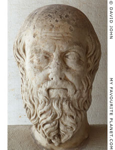 Marble head of the ancient Greek historian Herodotus.