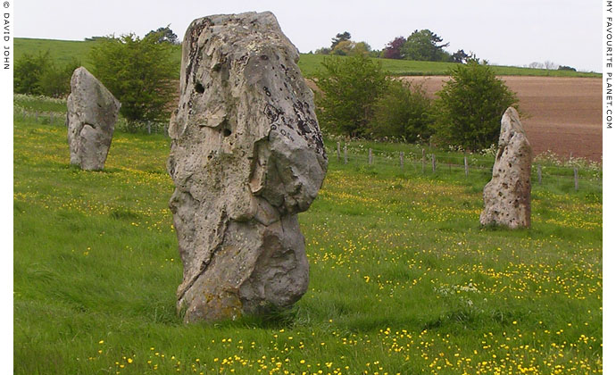 West Kennet Avenue, Avebury, Wiltshire at My Favourite Planet