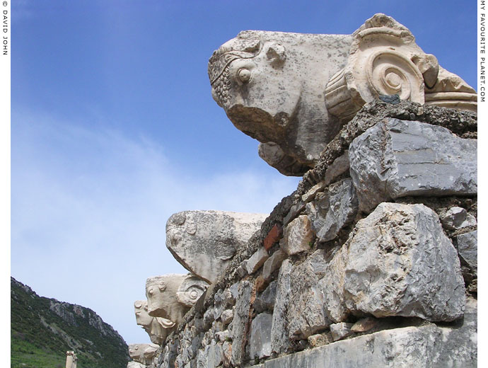 Ionic column capitals decorated with bulls' heads, from the Basilica in the Upper Agora, Ephesus at My Favourite Planet