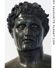 Bust of Seleucus I at My Favourite Planet