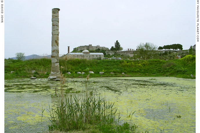 The only standing column reconstructed among the submerged ruins of the Temple of Artemis, Selcuk, Turkey at My Favourite Planet