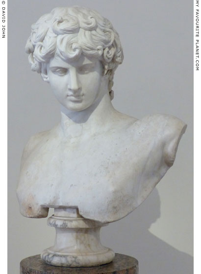 Ancient marble portrait bust restored as Antinous, Palazzo Altemps, Rome at My Favourite Planet