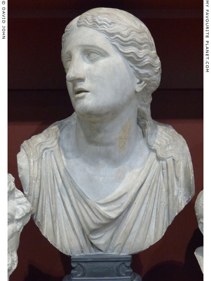 Plaster cast of a marble bust of Niobe in Dresden at My Favourite Planet