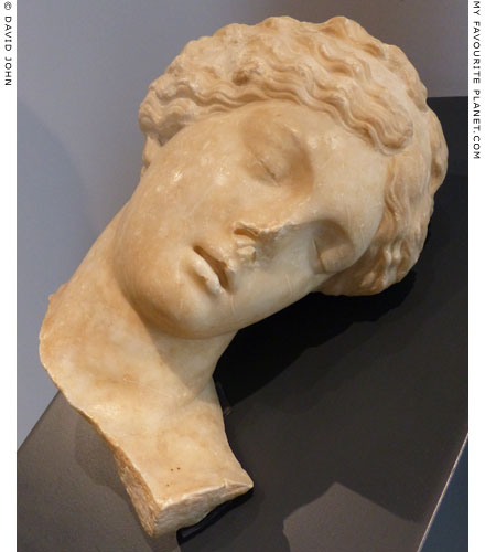 A marble head of a sleeping or dead girl, perhaps depicting a Niobid at My Favourite Planet