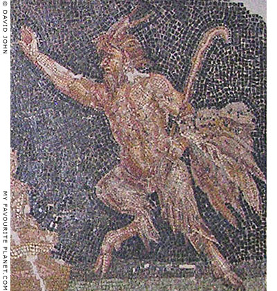 Pan on a floor mosaic from Ephesus at My Favourite Planet
